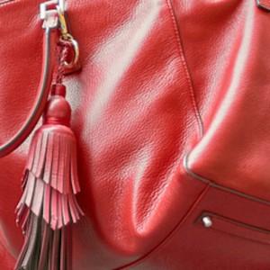 Red Handbag Favicon